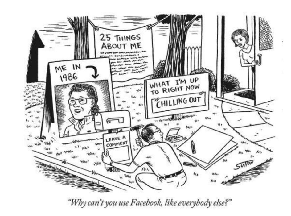 Facebook, o biografie suprapusă